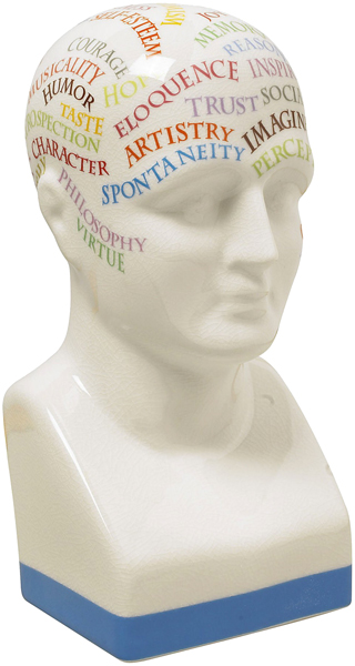 Colorful Phrenology Head